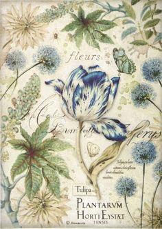 2a229e151f687636e189f7ce1b919727_e Papel Vintage, Decoupage Vintage, Decoupage Paper, Vintage Paper, Vintage Art, Decoupage Printables, Blue Tulips, Collage Background, Art Prints For Sale
