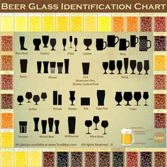 Beer glass education. Become the beer know-it-all of your friends!