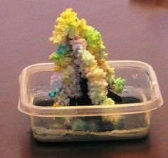"growing salt crystals to make your own ""Magic Tree"""