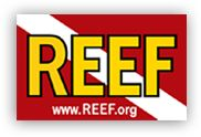 Reef Environmental Education Foundation (REEF)