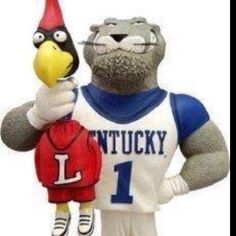 Go Kentucky Wildcats!!!