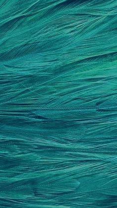 freeios8.com - vf29-feather-blue-bird-pattern - http://goo.gl/dojLdf - iPhone, iPad, iOS8, Parallax wallpapers