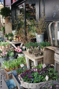 Kph+april8.jpg (800×1200)Vacker och bohemisk blomsterbutik i Köpenhamn....