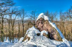 Bear Rock near Modra, Slovakia.