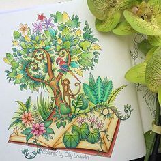 Take A Peek At This Great Artwork On Johanna Basfords Colouring Gallery Find Pin And More Magical Jungle