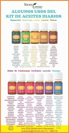 Best 11 Digital Flyer – Wellness with Everyday Essential Oils Class – Flyer Handout – Aroma Decoder – SkillOfKing. Young Essential Oils, Essential Oil Blends, Progessence Plus Young Living, Young Living Kits, Young Living Thieves, Esential Oils, Spa, Living Oils, Natural Oil