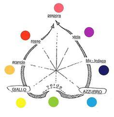 Cerchio dei colori dell'organico vivente