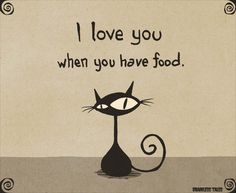I Love You When You Have Food (Brainless Tales Cat)