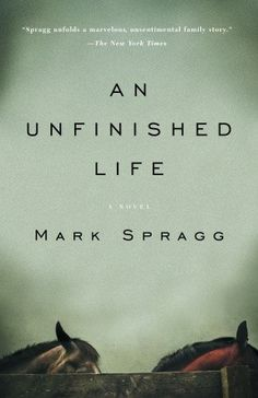 An Unfinished Life...a story of family dynamics,love,and forgiveness.