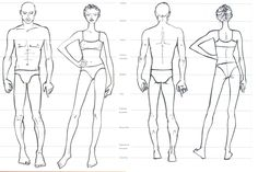 Proporcoes do corpo humano idealizado