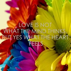 WHAT THE HEART FEELS ♥ #love
