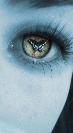 blue black butterfly eye.
