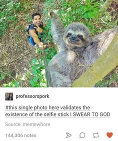 This sloth is sexy and it knows it. I approve of the selfie stick.