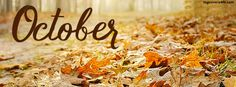 Get our best October Fall Leafs facebook covers for you to use on your facebook…