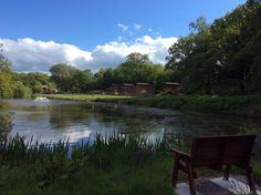 #LodgeHolidaysinDevon #HolidayLodges #LodgesForSaleInDevon #LakeviewManor #WeddingVenueinDevon #Hotel #Restaurant #Conferencing #Events #Fishing