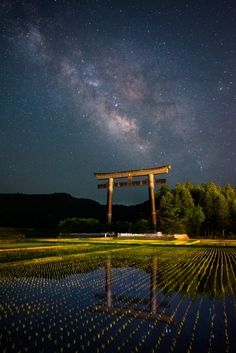 Untitled  by Uemura Masahisa - Japan - May, 2015