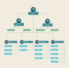 Download The Company Organizational Chart From VertexCom