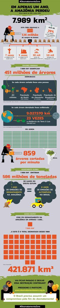 """""""O governo sinalizou que irá tolerar a destruição"""", observou Cristiane Mazzetti, da Campanha Amazônia do Greenpeace, à assessoria da instituição. """"Quando o desmatamento começou a cair, em 2005, o recado era outro, de que a devastação seria combatida, com grandes esforços de ONGs e dos setores público e privado."""" O Pará se mantém recordista de destruição, com 3025 km² de floresta destruída, 37% do total. Amazonas e Acre, que haviam melhorado suas políticas de conservação, sofreram aumentos de…"""