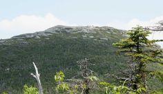 Wright Peak, Adirondacks, juillet 2015 Mount Rainier, American History, Photos, Mountains, Usa, Nature, Travel, Upstate New York, Pictures