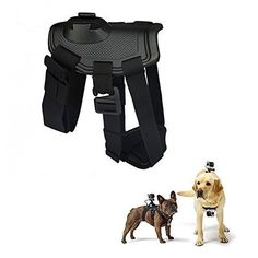 iGearPro Dog Harness - Pet Chest and Back Belt with Camera Mount - Comfortable and Safe - Explore Your Dogs World