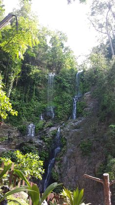 """See 115 photos and 3 tips from 447 visitors to Tamaraw Falls. """"The falls are actually pretty impressive cascading from high above you. Water Bed, Small Waterfall, Natural Wonders, Waterfalls, Philippines, Bucket, San, Nature, Naturaleza"""