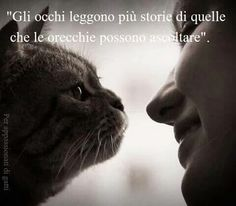 Gli occhi the eyes tell more stories of what ears can hear
