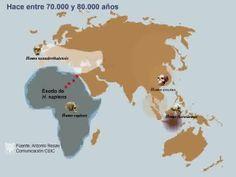 Somos un poco neandertales   Sociedad   EL PAÍS