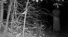 Trail camera captures robed figure in forest