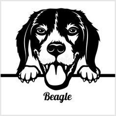 Beagle - Peeking Dogs - - breed face head isolated on white. Beagle - Peeking Dogs - breed face head isolated on white - vector stock vector illustration Dog Drawing Simple, 3d Cnc, Animal Sewing Patterns, Wood Burning Art, Black N White Images, Animal Faces, Easy Drawings, Metal Art, Dog Breeds