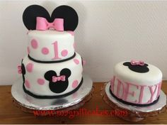 Minnie Mouse 1st Birthday Cake and Smash Cake