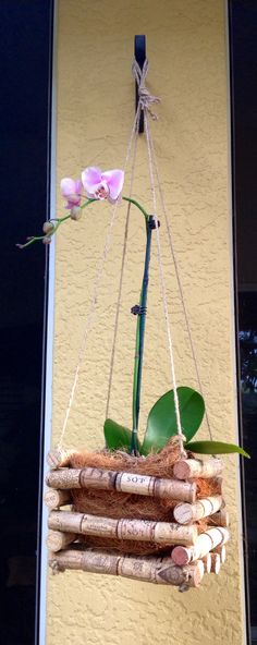 Hanging Wine Cork Orchid Basket by coastalcollections25 on Etsy                                                                                                                                                                                 More