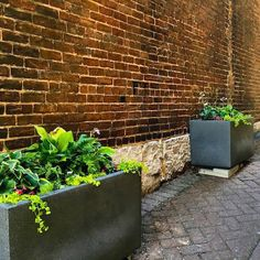 Commercial Planters | Extra Large, Self-Watering Urban Rectangle | EarthPlanter