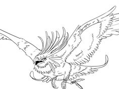 Wonderful Picture of Phoenix Coloring Page . Phoenix Coloring Page Gryphon Tatoo Not Finished Onnix Coloring Page Outstanding Pages Bird Coloring Pages, Free Printable Coloring Pages, Adult Coloring Pages, Pictures Of Phoenix, Sketch Free, Phoenix Design, Sun Logo, Picture Engraving, Cat Eye Makeup