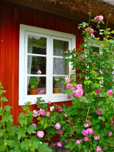 Thatched roofline, potted geraniums on the window sill ♥ Swedish Cottage, Swedish Decor, Red Cottage, Swedish Style, Swedish House, Garden Cottage, Scandinavian Design, Cottage Style, Home And Garden