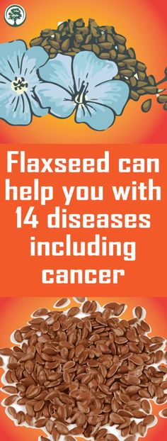 Flaxseed can help you with 14 diseases including cancer! Flaxseed can help yo Natural Cancer Cures, Natural Cures, Natural Healing, Health And Wellness, Health Tips, Health Fitness, Health Benefits, Wellness Tips, Fitness Tips