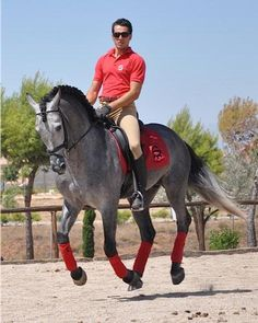 Andalusian Dressage - Beautiful horse!! And the rider is quite nice to look at too!!