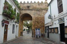 Esta zona recibe el nombre de Judería por haber sido, entre los siglos X y XV, el barrio en el que vivían los judíos que llegaron hasta España. Situada al