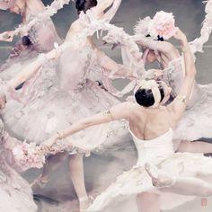 Nikolay Krusser:  Photographs of the Mikhailovsky Ballet