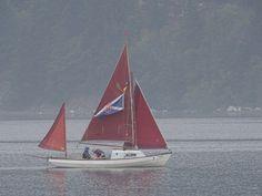 Cruise Boat, Dinghy, Small Boats, Touring, Sailor, Coaster, Canoes, Small Sailboats, Viajes