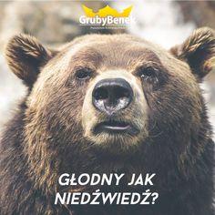 Głodny jak niedźwiedź? :) Zamów pizzę! :) http://grubybenek.pl/