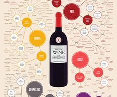 View 18x24 Different Types of Wine Poster