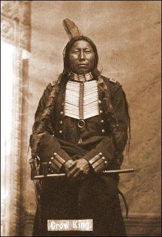 Crow King - Hunkpapa - 1881