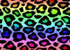 Rainbow leopard wallpaper