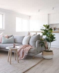 How To Decorate A Grey and Blush Pink Living Room Minimalist Living Room Blush Decorate Grey Living pink Room Blush Pink Living Room, Living Room Grey, Living Room Sofa, Home Living Room, Living Room Designs, Pink Room, Living Area, Living Room Windows, Plants In Living Room