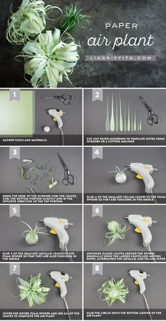 When you are making your paper air plants, feel free to craft a variety of sizes using the same general technique. As you can see, we also made a smaller