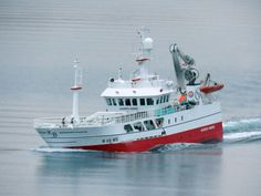 Fiskeridirektoratet ber om regelendring for å hindre kvotespekulasjon der det brukes store fartøyer for å fiske mindre kystbåters kvoter ved nybygging. Sailing Ships, Boat, Dinghy, Boats, Sailboat, Tall Ships, Ship
