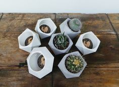 Hey, I found this really awesome Etsy listing at https://www.etsy.com/listing/236217184/set-of-7-concrete-planters-one-concrete