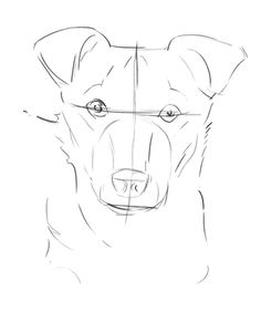 Cartoon Drawing Techniques the dog drawing in progress - You don't need to be a trained artist to learn how to draw a dog. Discover how to sketch your dog's portrait in pencil with this simple lesson. Cartoon Drawings, Animal Drawings, Easy Drawings, Drawing Sketches, Sketching, Pencil Drawings, Face Sketch, Dog Pencil Drawing, Dog Drawings