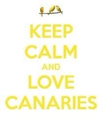 Minions Stop Panicking And Keep Calm Because There Is Plenty Of Bananas  Over There