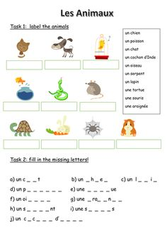 Worksheets About Animals French Flashcards, French Worksheets, French Language Lessons, French Lessons, English Language, French Teaching Resources, Teaching French, Learning Resources, French Adjectives